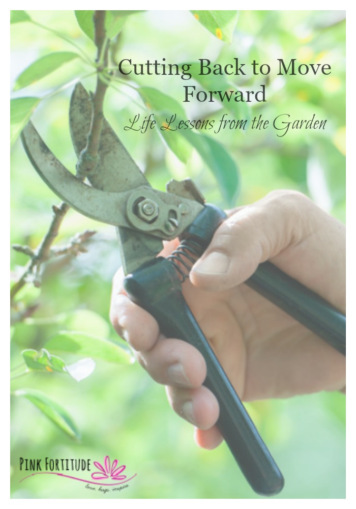 Cutting Back to Move Forward – Life Lessons from the Garden